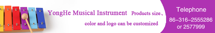 Hot sale musical instrument names for child TL8-4