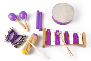 Hot sale wood toys musical instrument set for girl toys ZLT6